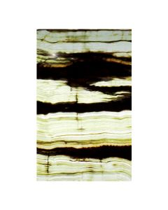 Bamboo Vein Onyx Translucent 5x8 Panel