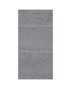 Alpha Grey 12x24 Matte