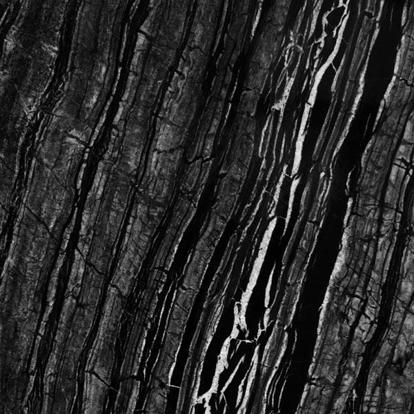 Ancient Woodgrain Bolder Panel