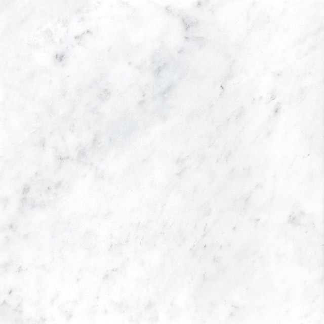 Bianco Cobalt 12x24 Honed Tile Stone Source